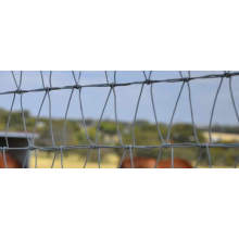 Safe and Charming Steel Diamond Horse Fencing
