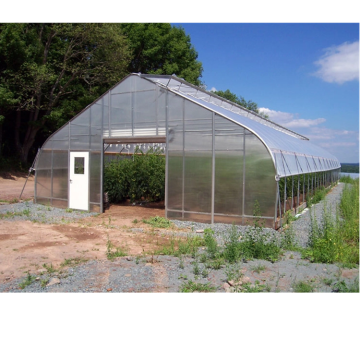 low cost greenhouse poly tunnel greenhouse solar hydroponic greenhouse