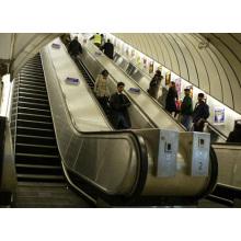 En115 Escalera mecánica estándar para edificio público