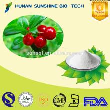 Alibaba China Uva Ursi P.E. powder HPLC 98% Alpha-arbutin