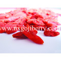 Ningxia Goji Berry / Wolfberry Obst / Chinesische Mispel