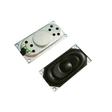 FBS2040T 20x40mm manual for mini digital speaker