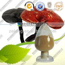 Ganoderma Natural Ganoderma Lucidum Extrato
