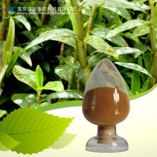 Best Price High Quality Standard Substance 98% Dendrobine
