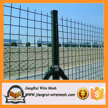 Holland wire mesh for sale/Garden fence/PVC coated wire mesh