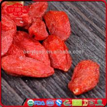 Ningxia lycium fruta