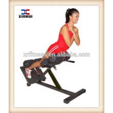 Strength body building machine/fitness equipment XW-8837 Roma chair made in China
