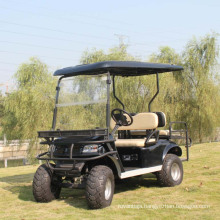China Factory Supply Electric 2 Seat Hunting Utility Vehicle (DH-C2)