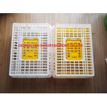 HIgh quality plastic box crate cage for chicken transportation chicken delivery