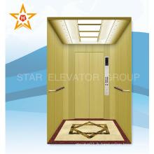 Ascenseur élévateur à domicile confortable et qualifié VVVF