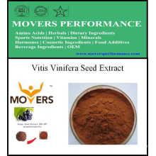 Экстракт растения высокого качества Vitis Vinifera Seed Extract