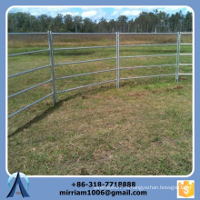 Оцинкованный верблюд скот для скота, оцинкованный железный забор для скота, прицеп для перевозки скота
