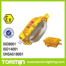Mh Emergency Explosion Proof Floodlight (BC9110AB)