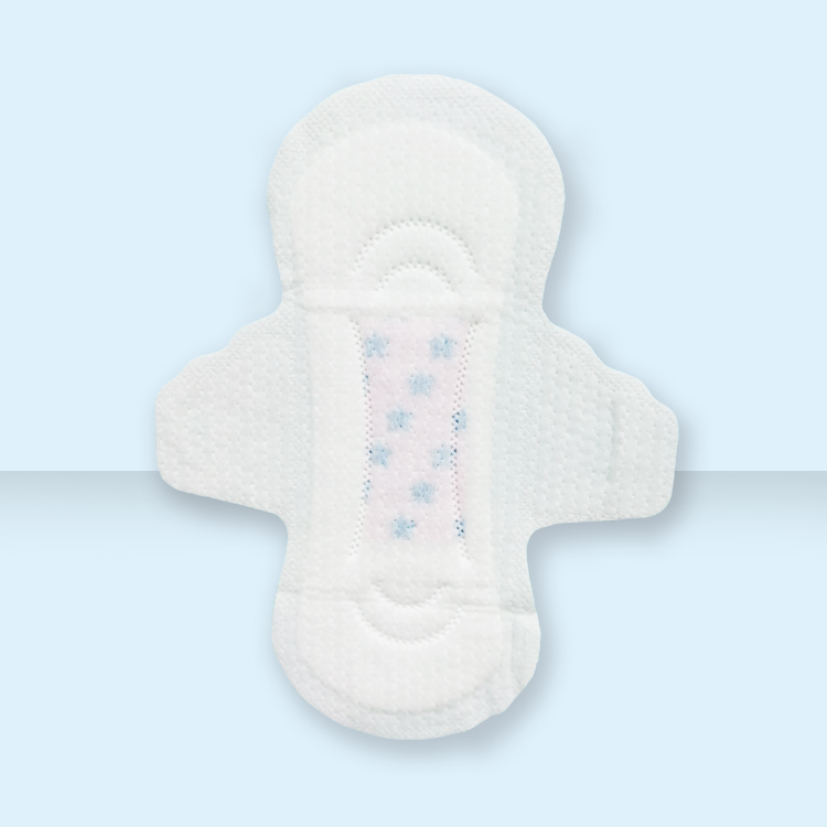 Sanitary Napkin Reusable