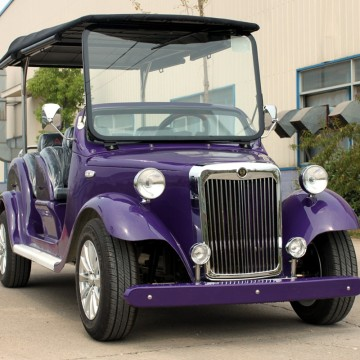 Venta al por mayor de combustible aprobado CE Classic Golf Cart