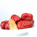 chinesische getrocknete rote Jujube / Jujube Frucht