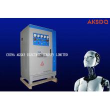 Прецизионный стабилизатор напряжения высокой мощности DBW / SBW