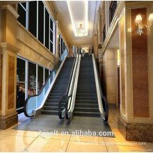 STADE Escada rolante profissional / Escada eléctrica / Transportador de passageiros