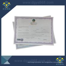 Degree Certificate mit Barcode und Heißprägung Hologramm Anti-Fälschung Printing