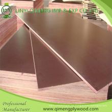 Una vez caliente presione 17.5mm Brown Film Faced Plywood en venta caliente