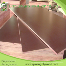 Waterproof Glue 18mm Construction Plywood with Good Price
