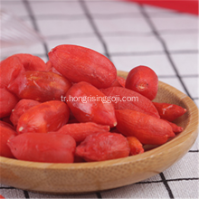 Freeze Berry Goji Berry Meyve