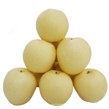 2021 New Harvest Low Price Fresh Sweet juicy Light Yellow Crown Pear