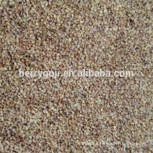 Graines biologiques de baies de Goji en gros