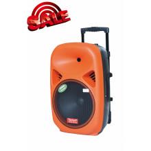 Caja de altavoz de batería recargable con USB / SD Microfono inalámbrico Bluetooth F28