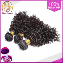 """14 """"reines malaysisches lockiges Haar, 100% heiße goldene perfekte Haarverlängerung"""