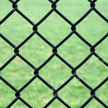 RAL6005 PVC Coated Chain Link Fence