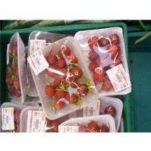 Guoliang Brande Factory Direct Sale Cheap Disposable Food Grade Plastic Punnet Shandong