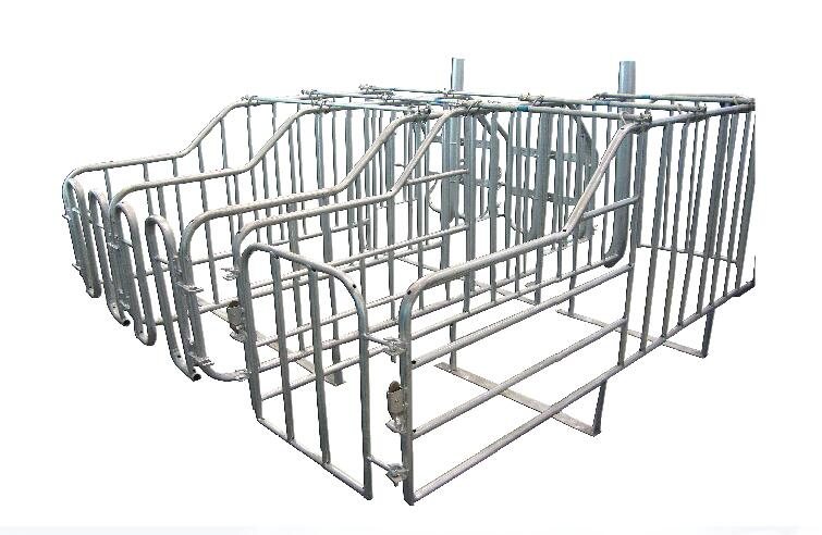 Tube Gestation Crates