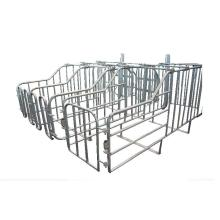 Berbagai Ukuran Galvanized Sow Gestation Crates For Pig