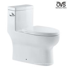 Pièces de toilette standard américaines de toilette en céramique d'une seule pièce