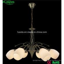 Внутреннее потолочное освещение для гостиной (D-8103/8)