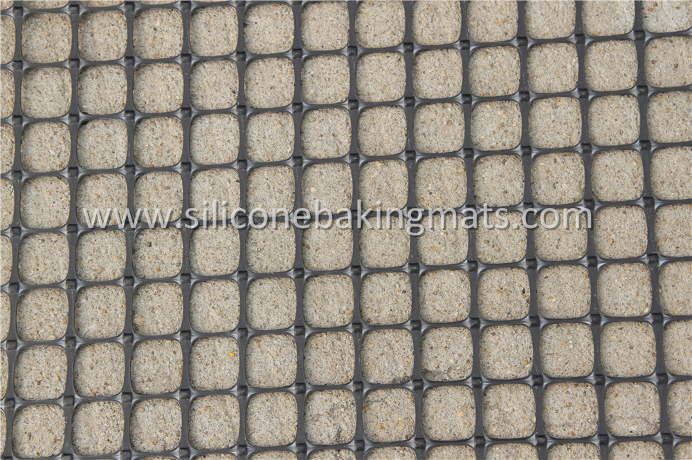 Extruded Plastic Geogrids