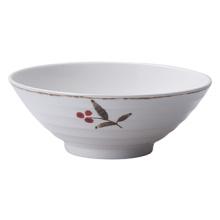 Melamine Ramen Bowl/Noodle Bowl(At576