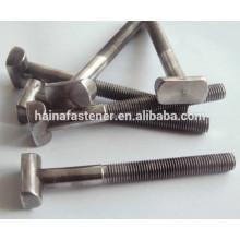 Нержавеющая сталь T-образный болт