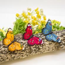 Décoration de papillon pour anniversaire