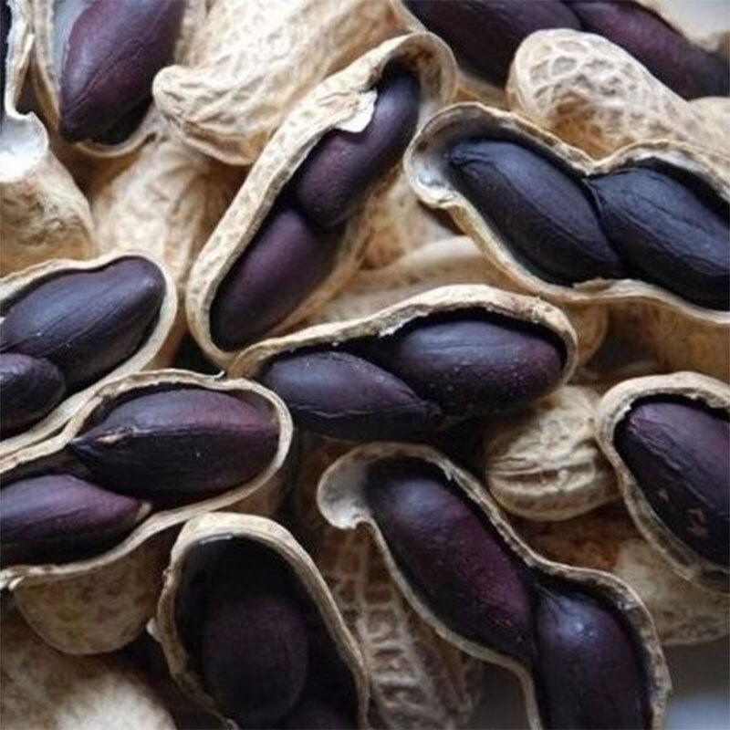 Black Peanut Kernel