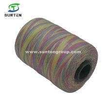 Colorful High Tenacity PE/PP/Polyester/Nylon Plastic Twisted/Braided/Baler/Thread/Packing Line/Fishing Net String (210D/380D) by Spool/Reel/Bobbin/Hank