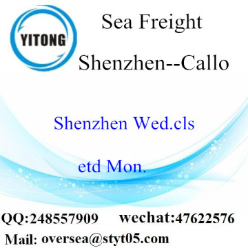 Shenzhen Port LCL Consolidation To Callo