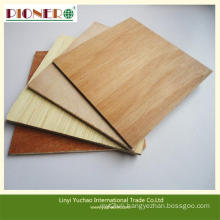 Two Molding Furniture Grade Commercial Plywood with Bintangor Face