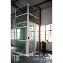 Panoramic shaft glass home elevator
