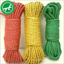 Bonne résistance à l'usure corde de torsion en nylon de 2,5 mm