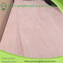 Pappel Material Okoume Türhaut Sperrholz im heißen Verkauf