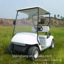 250CC 2 Seater Gas Powered Golf Cart