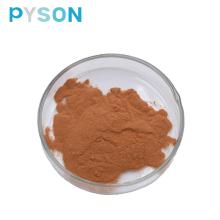 Polifenoles de té de extracto de té verde en polvo 98%