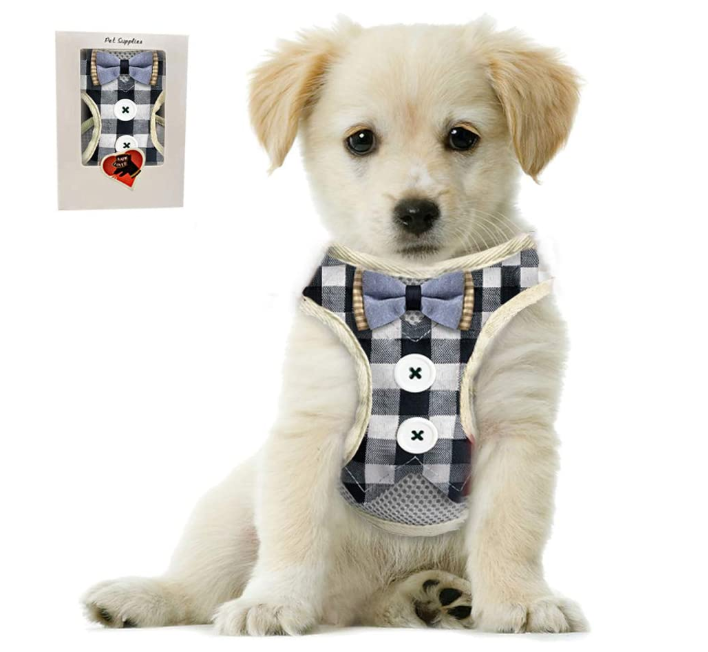 Small Puppy Harness With Bowtie